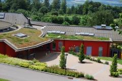 Firmengebäude in Leichtdachkonstruktion mit extensiver Dachbegrünung