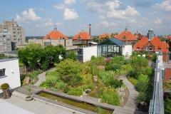Dachgarten der Wiegmann Klinik in Berlin