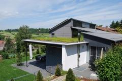 Wohnhaus mit Dachbegrünung