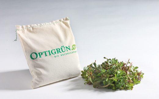 Optigrün-Saatgtmischung und Sedum-Sprossen