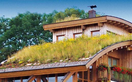 Privathaus in Holzbauweise mit Gründach.