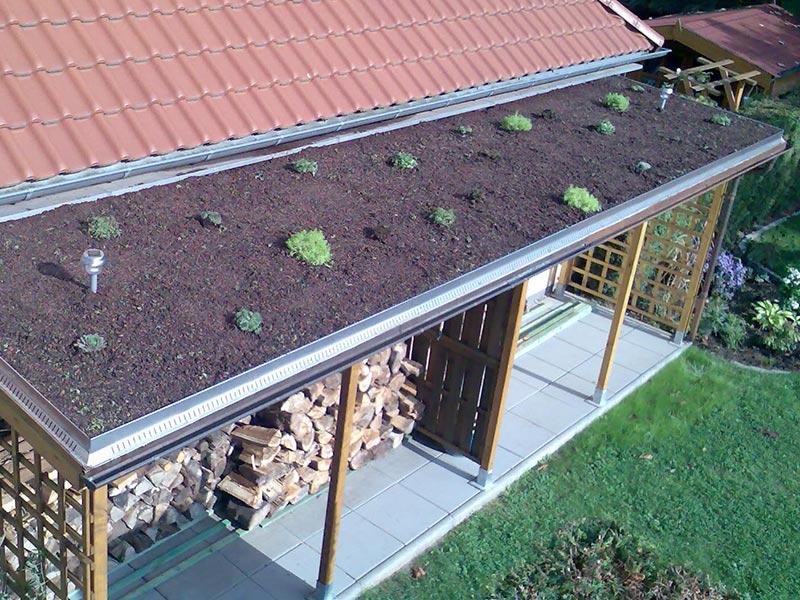 Begrünung des Vordachs mit extensiver Dachbegrünung.