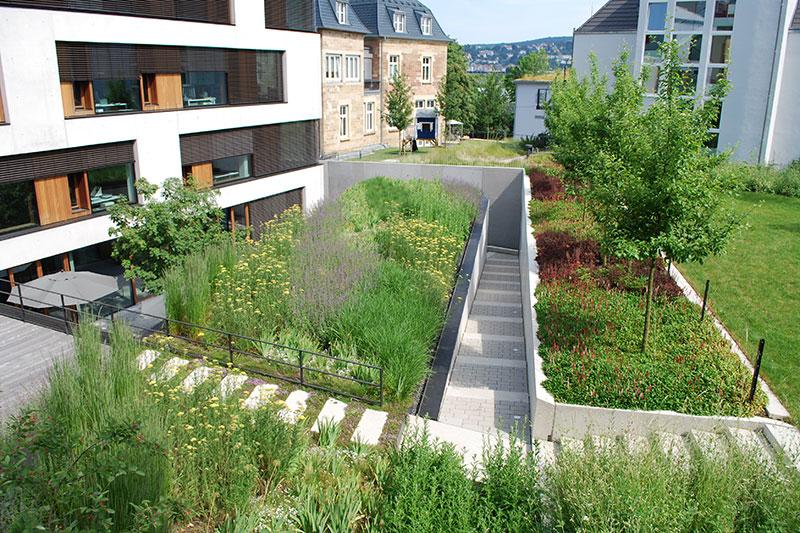 Begrüntes Architekturbüro Blocher in Stuttgart