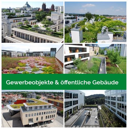 Gewerbeobjekte & öffentliche Gebäude